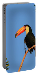 Toco Toucan Portable Battery Charger by Bruce J Robinson
