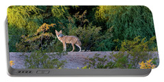 Today's Coyote Portable Battery Charger