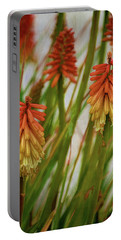 Torch Lily At The Beach Portable Battery Charger by Sandi OReilly