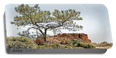 Torrey Pine 1 Portable Battery Charger