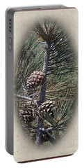 Torrey Pine Cones - 2 Portable Battery Charger