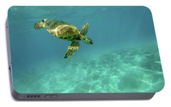 Tortoise Portable Battery Charger by Happy Home Artistry
