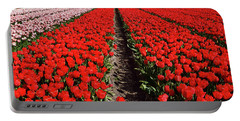 Tot Far Away Red Tulips Field Portable Battery Charger by Mihaela Pater