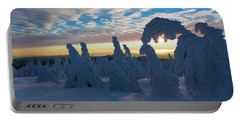 Touched From The Winter Sun Portable Battery Charger