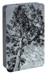 Portable Battery Charger featuring the photograph Towering by Linda Lees