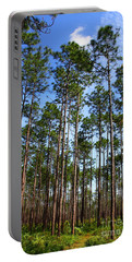 Trail Through The Pine Forest Portable Battery Charger