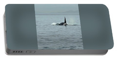 Transient Killer Whale Portable Battery Charger