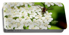 Transverse Flower Fly Portable Battery Charger