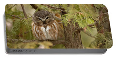 Portable Battery Charger featuring the photograph Treasures Of The Forest by Everet Regal