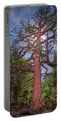 Tree Cali Portable Battery Charger
