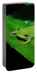 Tree Frog On Hibiscus Leaf Portable Battery Charger by DigiArt Diaries by Vicky B Fuller