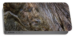 Portable Battery Charger featuring the photograph Tree Memories # 19 by Ed Hall