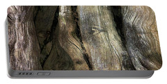 Portable Battery Charger featuring the photograph Tree Memories # 24 by Ed Hall