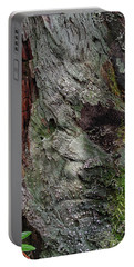 Portable Battery Charger featuring the photograph Tree Memories # 38 by Ed Hall