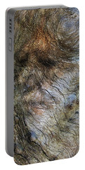 Portable Battery Charger featuring the photograph Tree Memories # 41 by Ed Hall