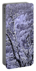 Portable Battery Charger featuring the photograph Tree Sprite by Kim Bemis