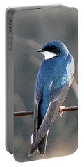 Tree Swallow Portable Battery Charger