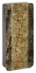 Treeform 3 Portable Battery Charger