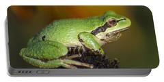 Treefrog On Rudbeckia Portable Battery Charger