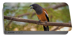 Treepie Calling Portable Battery Charger