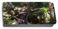 Trees - Mont Tremblant National Park Portable Battery Charger