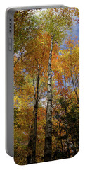 Trees On The Lincoln Woods Trail Portable Battery Charger