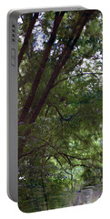 Trees Reflected In A Woodland Stream 2867 H_2 Portable Battery Charger
