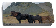 Portable Battery Charger featuring the photograph Tri - Color Icelandic Horses by Dubi Roman