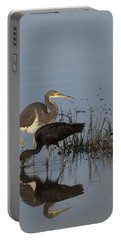 Tri-colored Heron And Glossy Ibis Portable Battery Charger