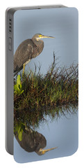 Tri-colored Heron And Reflection Portable Battery Charger