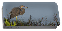 Tri-colored Heron In The Morning Light Portable Battery Charger