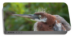 Tricolored Heron - Bad Hair Day Portable Battery Charger