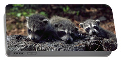 Triplets Portable Battery Charger by Sally Weigand