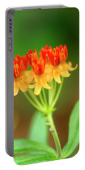Tropical Milkweed Portable Battery Charger