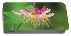 Trumpet Honeysuckle Portable Battery Charger