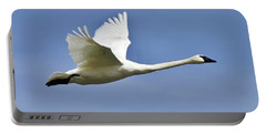 Trumpeter Swan In Flight Portable Battery Charger