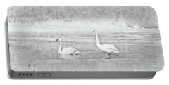 Portable Battery Charger featuring the photograph Trumpeter Swan's Winter Rest Gray by Jennie Marie Schell