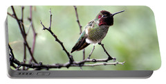 Trumpeting Hummingbird Portable Battery Charger