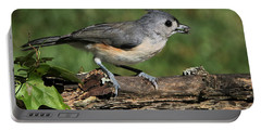 Tufted Titmouse On Tree Branch Portable Battery Charger