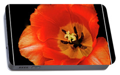 Tulip Macro Portable Battery Charger by Kenneth Clinton