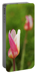 Tulip Time Portable Battery Charger