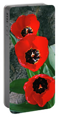 Portable Battery Charger featuring the photograph Tulip Trio by LeeAnn McLaneGoetz McLaneGoetzStudioLLCcom