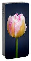Tulip Triumph - 2 Portable Battery Charger
