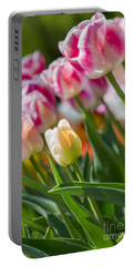 Portable Battery Charger featuring the photograph Tulips by Angela DeFrias