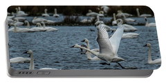 Tundra Swan And Liftoff Head Start Portable Battery Charger