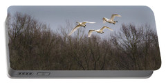 Tundra Swan Trio Portable Battery Charger