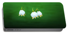 Turkey-eggs On Green #g2 Portable Battery Charger