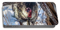 Portable Battery Charger featuring the photograph Turkey In The Brush by Paul Freidlund