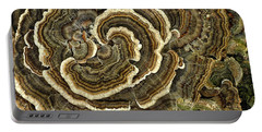 Turkey Tail Fungus Portable Battery Charger