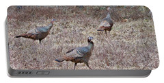 Portable Battery Charger featuring the photograph Turkey Trio 1153 by Michael Peychich